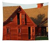 Dual Barns-3811 Tapestry