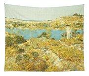Dune Pool Tapestry