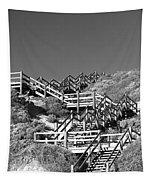 Dune Steps 03 Tapestry