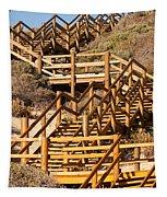 Dune Steps 06 Tapestry