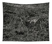 Dusk Fawn Tapestry