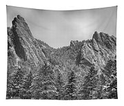 Dusted Flatiron In Black And White  Tapestry