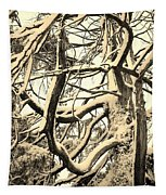 Snow Dusted Limbs Tapestry