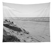 Dutch Coast Black And White Tapestry