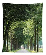 Dutch Landscape - Country Road Tapestry