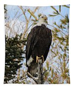 Eagle 2 Tapestry