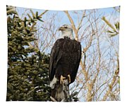 Eagle 6 Tapestry
