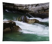Eagle Creek Washington 3 Tapestry