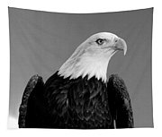 Eagle On Watch Black And White Tapestry