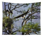 Eagle Pair And Nest Tapestry