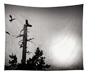 Eagles And Old Tree In Sunset Silhouette Tapestry