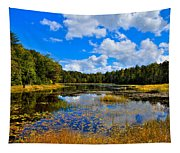 Early Autumn At Fly Pond - Old Forge New York Tapestry