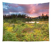 Early Autumn Meadow Sunset At Mt Baker Tapestry