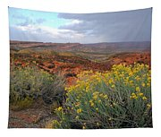 Early Evening Landscape At Arches National Park Tapestry