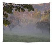 Early Morning Country Tapestry