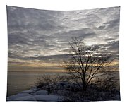 Early Morning Tree Silhouette On Silver Sky Tapestry