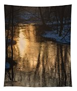 Early Winter Morning Tapestry