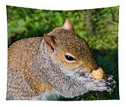 Eastern Grey Squirrel Tapestry