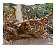 Eccentric Tree Root Growing In Ein Gedi Tapestry