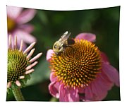 Echinacea And Bee Tapestry