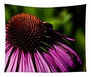 Echinacea  Tapestry
