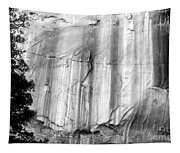 Echo Canyon Bw Tapestry