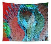 Echoing Seed Pod  Tapestry