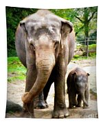 Elephant Baby Olli With Mommy Tapestry