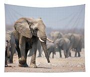 Elephant Feet Tapestry