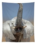 Elephant Portrait Tapestry