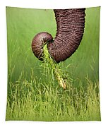 Elephant Trunk Pulling Grass Tapestry