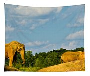 Elephants Among The Rocks. Tapestry