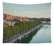 Elevated View Of The Zubizuri Bridge Tapestry