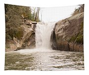 Elk Creek Falls 34 Tapestry