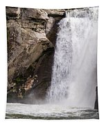 Elk Creek Falls 35 Tapestry