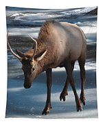Elk On Ice Tapestry by Perspective Imagery