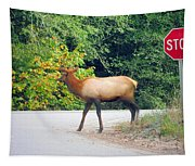 Elk Right Of Way Tapestry