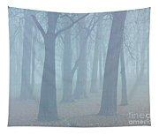 Elkhart Fog Tapestry