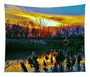 Emagin Sunset Tapestry