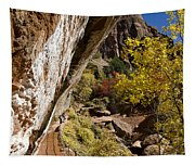 Emerald Falls Zion National Park Tapestry