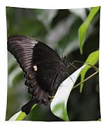 Emerald Peacock Swallowtail Butterfly #6 Tapestry