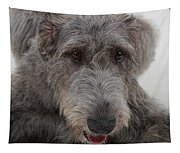 Irish Wolfhound IIi Tapestry