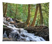 Enchanted Wood Tapestry