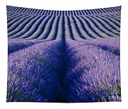 Endless Rows Tapestry