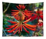 Erythrina Speciosa Tapestry