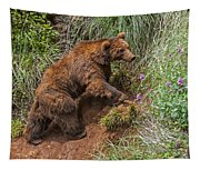 Eurasian Brown Bear 21 Tapestry