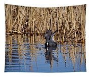 Eurasian Coot And The Bubles Tapestry