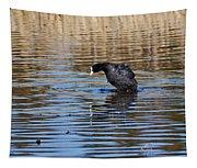 Eurasian Coot Tapestry