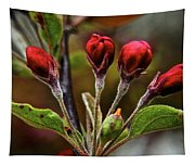 Evening Beauty Tapestry