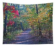 Evening Walk Thru The Woods Tapestry